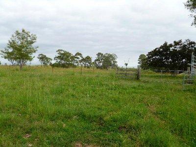 85 Lees Lane, Hogarth Range