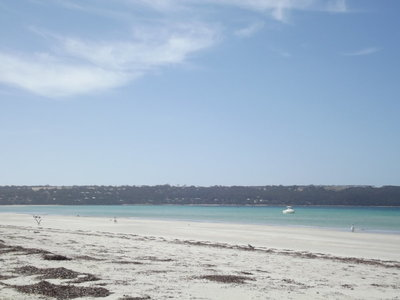 Lot 103, Flinders Grove, Island Beach
