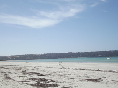 Lot 10, Coral Crescent, Island Beach