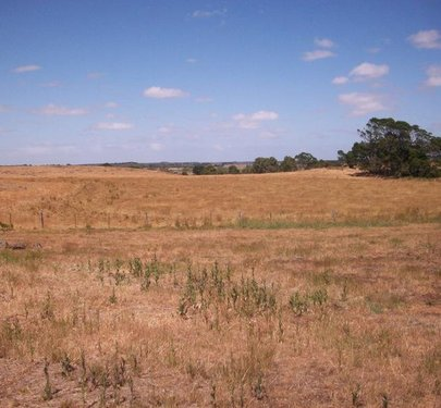 223 Acres Ellerslie-Panmure Road, Framlingham