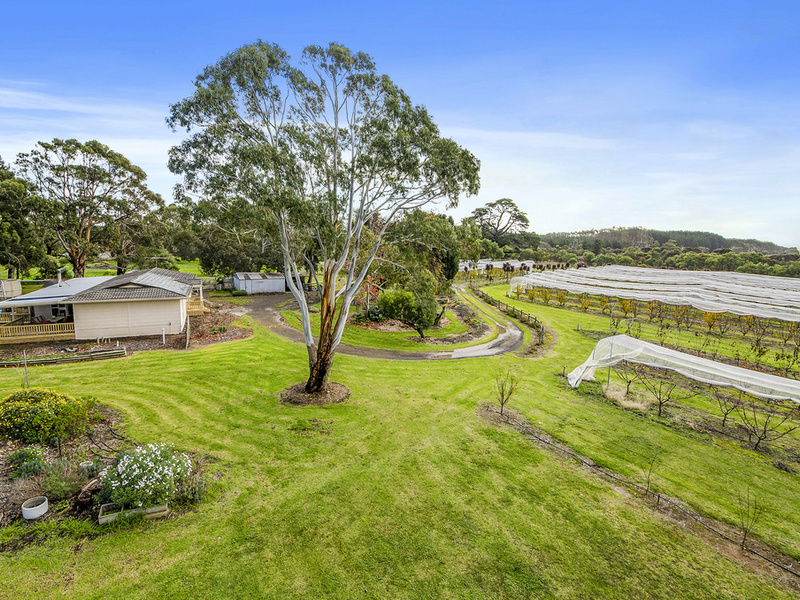 11516 Southern Ports Highway, Millicent