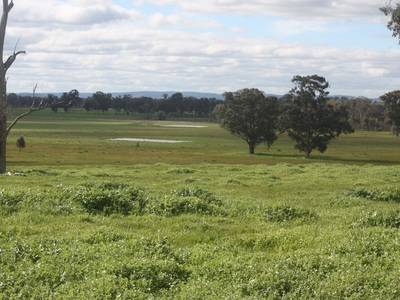Lot 73, Webster Road, Benalla