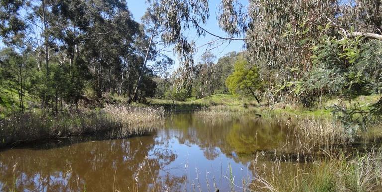 'Noora'  CA 56A  Harrys Creek Ro...