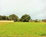 11 Dev Patterson Drive, Edithburgh