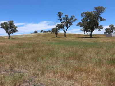 Lot 2A, 2A / 5393 Goulburn Valley Hwy, Yea