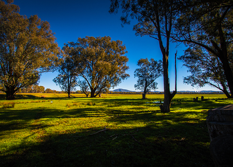 Lot 251 Thurgoona Drive, Thurgoona