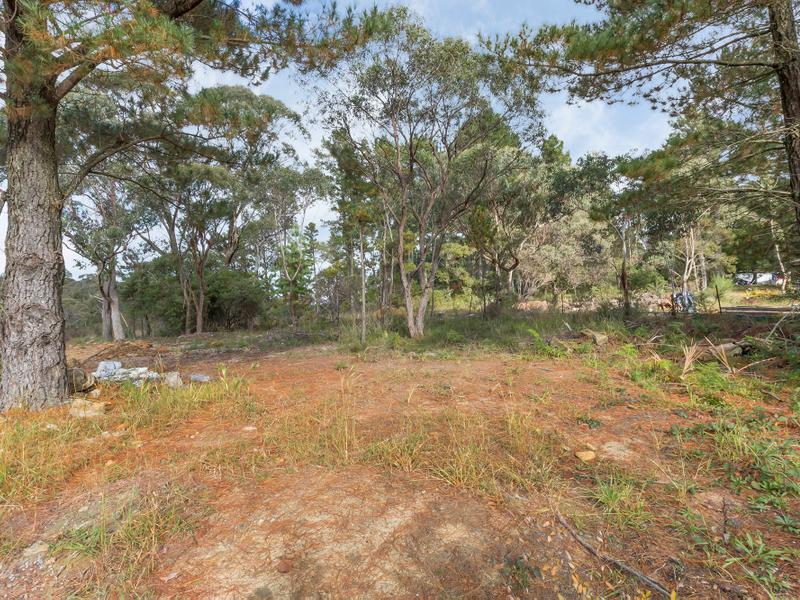 19 Sandbox Road, Wentworth Falls