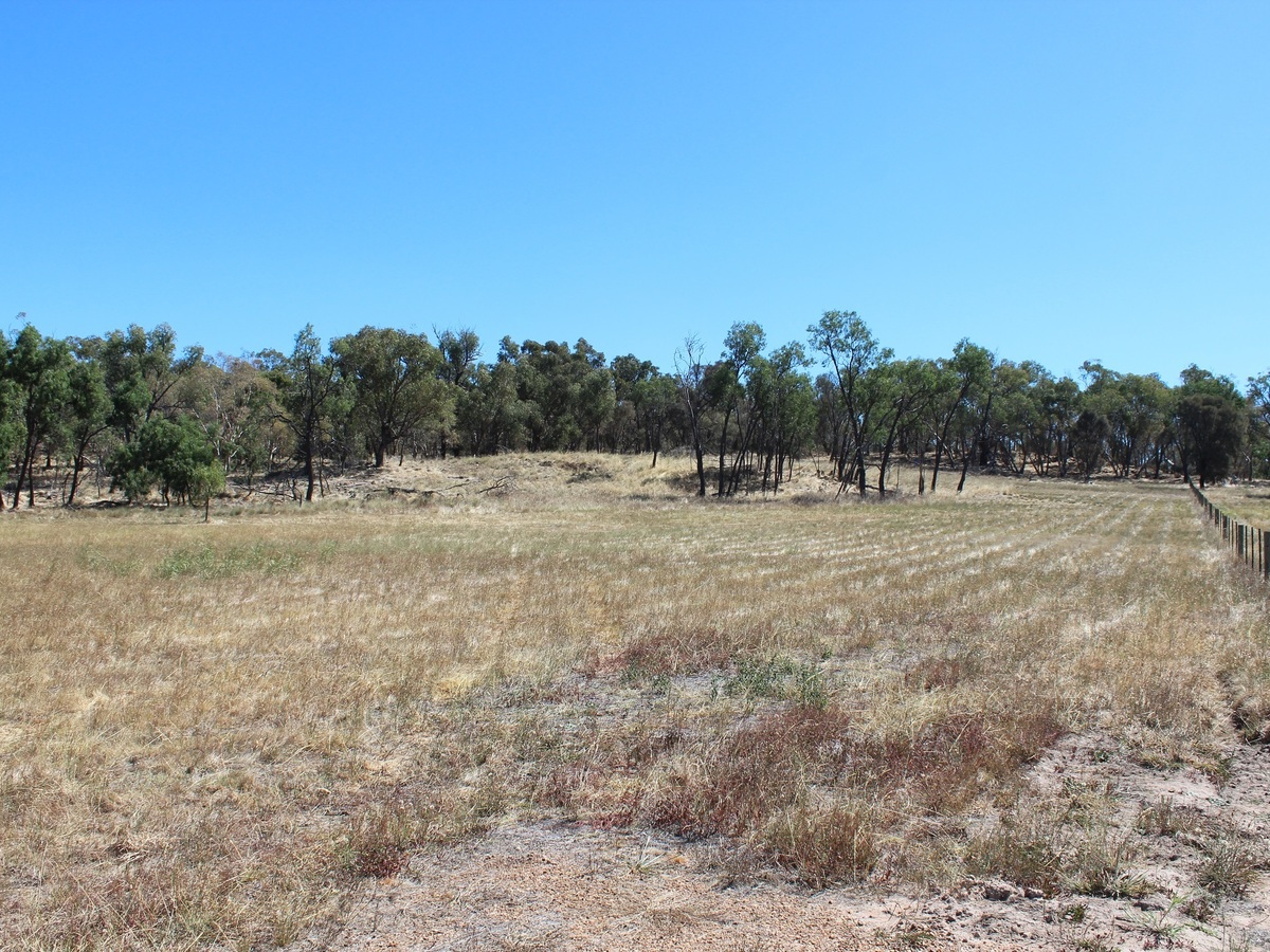 Lot 51, Lakeside Drive, Chesney Vale