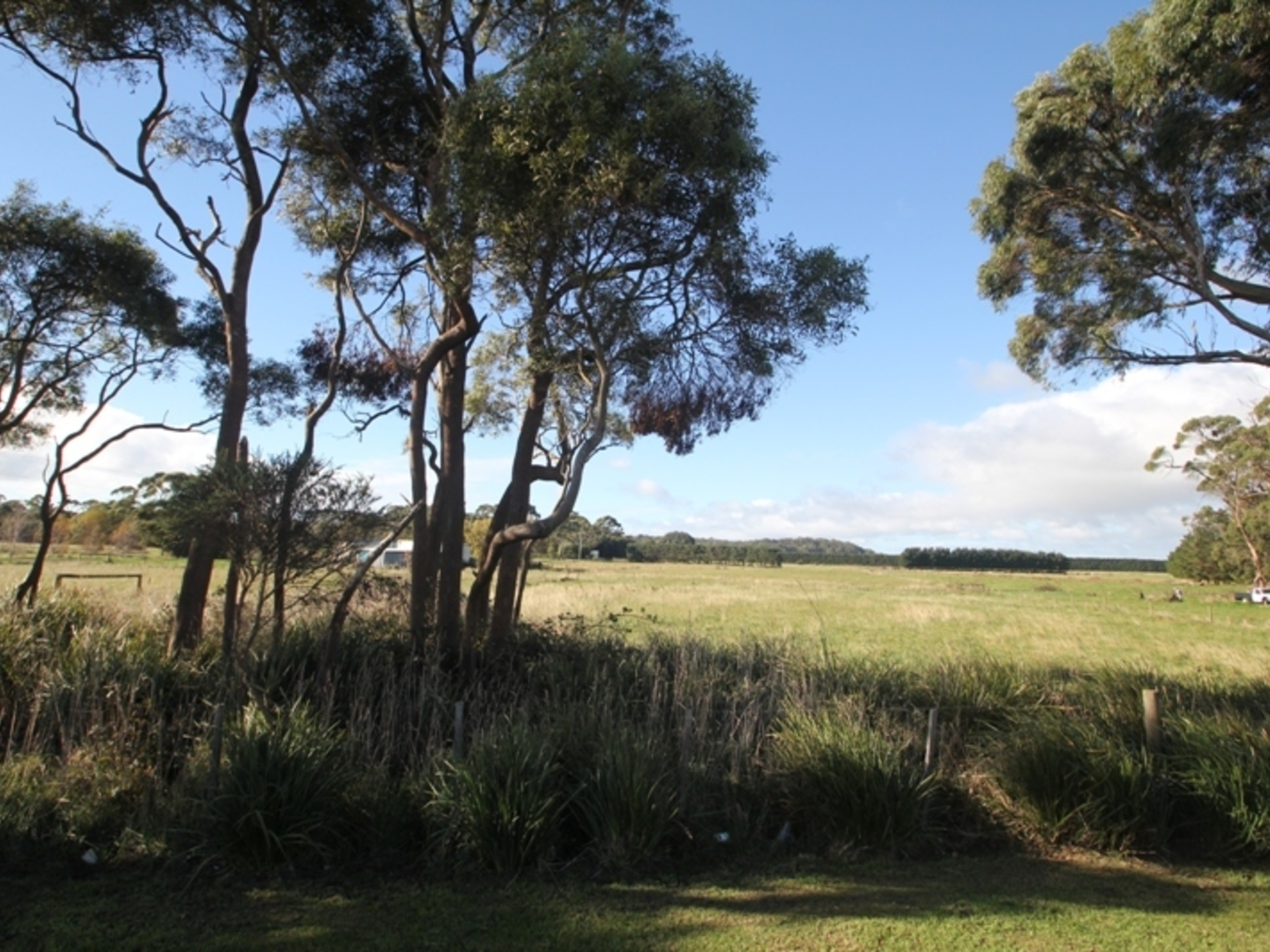 - Rifle Range Road, Smithton