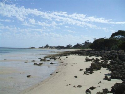Lot 152, Beach Crescent, Baudin Beach