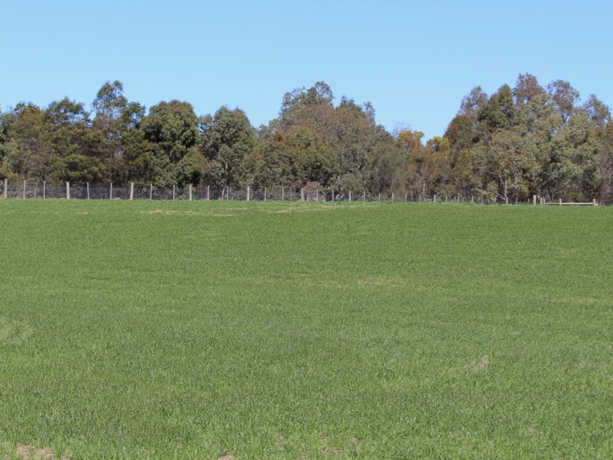 Lot 88 & 90A, Saleyard Road, Inverleigh