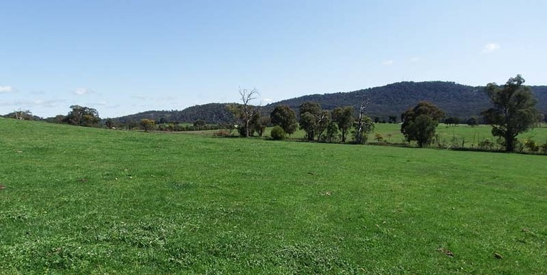 696 Galls Gap Road Strathbogie, Euroa