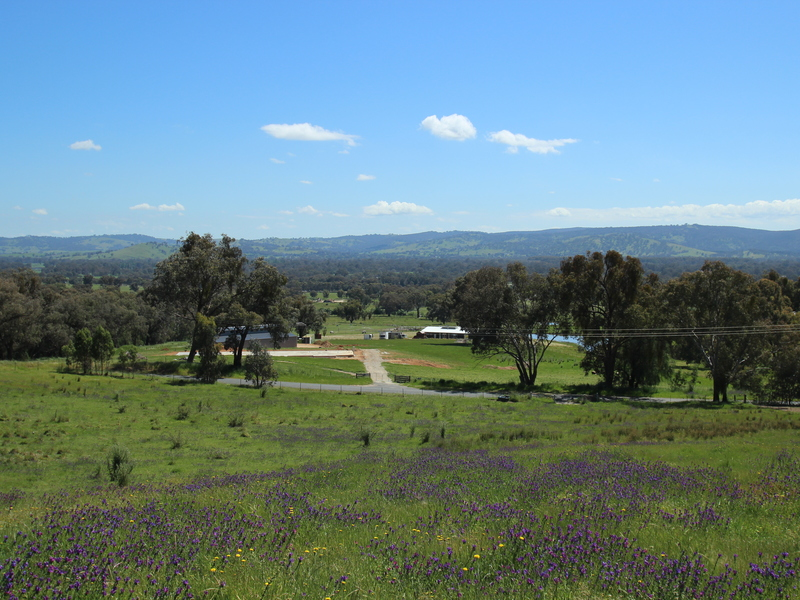 Lot 8, (137) COYLE'S ROAD, Wodonga