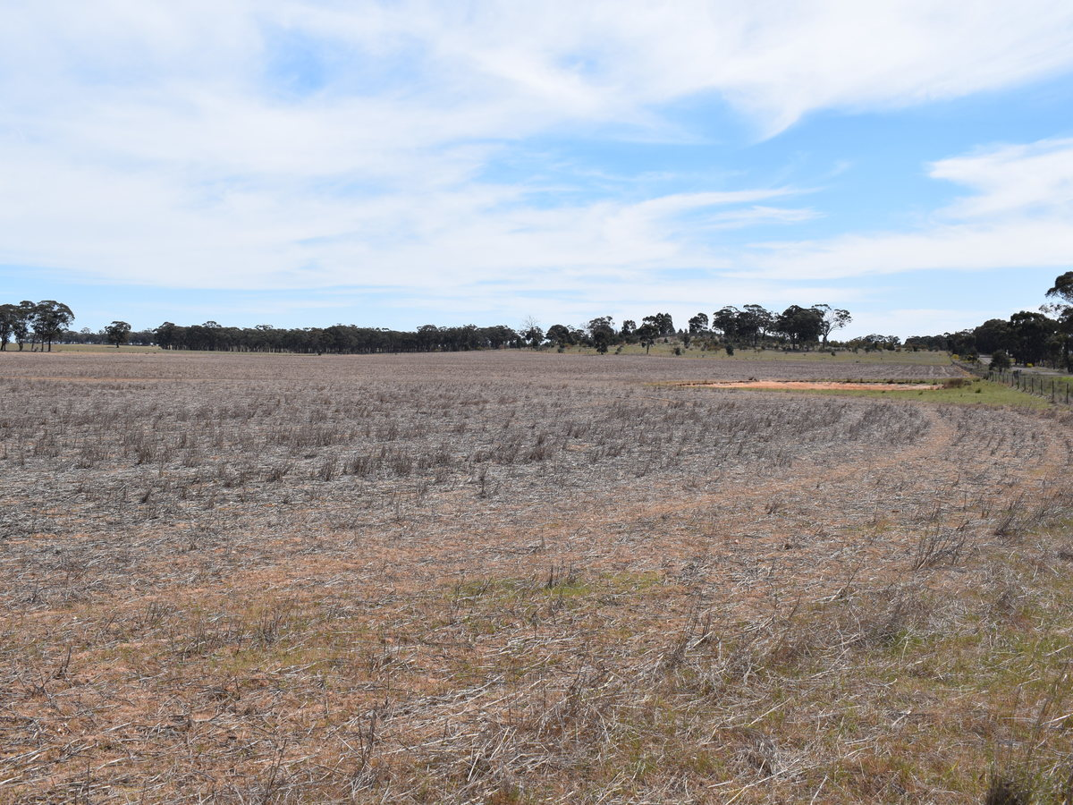 Lot 46, Bridgewater Dunolly Road, Llanelly