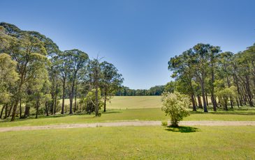 2290 Gembrook-Launching Place Road, Gembrook