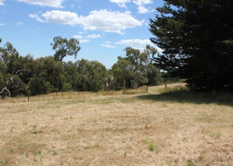569 Range Road, The Range