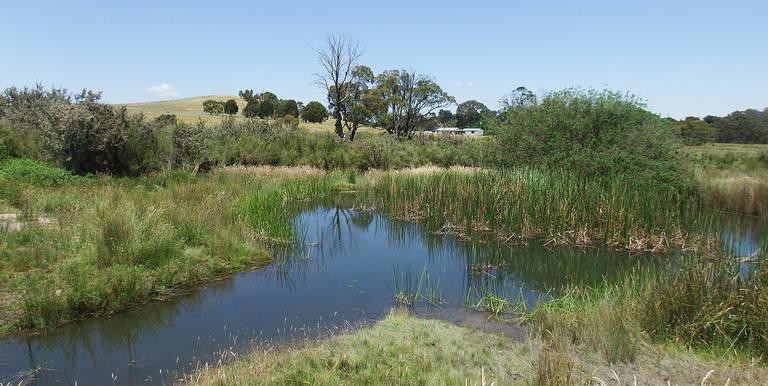 402 Spring Creek Road, Strathbogie