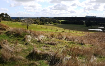 - Cnr Springhill-Kyneton Rd and Salisbury Rd, Spring Hill