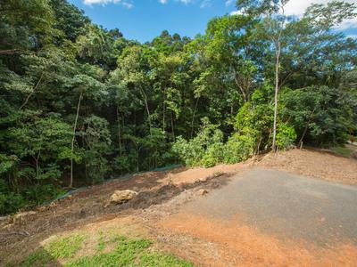 24 Douglas Track Road, Kamerunga