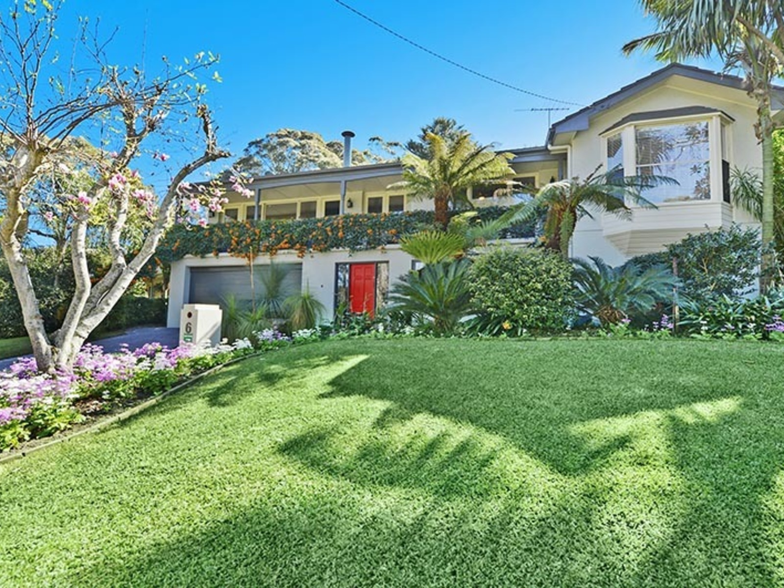 6  Cabbage Tree Road, Bayview