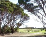 Lot 10, North Cape Road, Bay Of Shoals