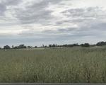 00 McMillans Road, Cohuna